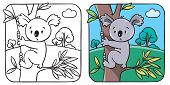 image of koala  - Coloring book or coloring picture with funny koala bear on eucaliptus tree - JPG