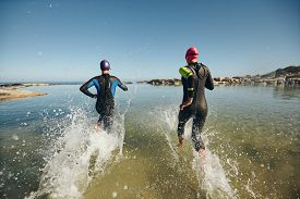 foto of triathlon  - Two athletic swimmers entering the water with their wetsuits on - JPG