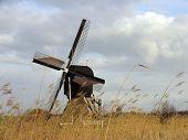 Dutch Windmill 11