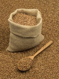 picture of buckwheat  - Full linen sack with buckwheat on background of scattered buckwheat with wooden spoon - JPG