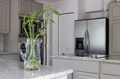 modern grey kitchen with jug of lucky bamboo on counter - domestic life