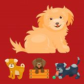 pedigree poster