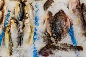Fresh Sea Fish Lying On Ice On A Counter In Grocery Store poster