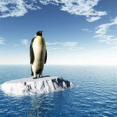 Antarctic penguin on ice - digital artwork