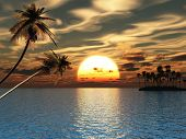 pic of tropical island  - Sunset coconut palm trees on small island - JPG