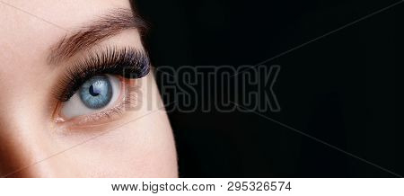 poster of Close Up View Of Beautiful Blue Female Eye With Long Eyelashes And Perfect Trendy Eyebrows On Dark B