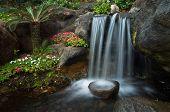 Zen Garden I