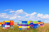 Colorful beehives in Montana, USA