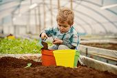 Greenhouse Worker. Small Boy Greenhouse Worker. Greenhouse Worker Planting Flowers. Greenhouse Worke poster