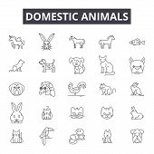 Domestic Animals Line Icons, Signs Set, Vector. Domestic Animals Outline Concept, Illustration: Dome poster