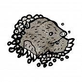 digging mole illustration