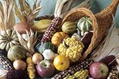 Cornucopia Of Fall Decorative Fruits