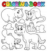 picture of possum  - Coloring book Australian fauna 1  - JPG