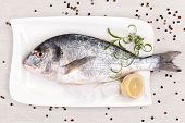 Sea Bream, Mediterranean Style.