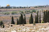 Graves On The Mount Of Olives