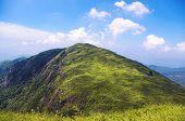 mooie grasland op berg