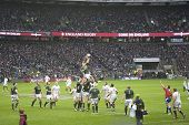 TWICKENHAM LONDON - NOVEMBER 23: South African Player Jumps for Ball at England vs South Africa, Eng