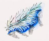 Single fluffy feather, watercolor with slate-pencil painting
