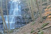 Wooded Waterfall