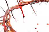 crown made of thorns and blood drops isolated on white background