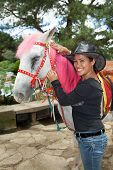 stock photo of luzon  - A beautiful Asian Filipino woman stands beside a white horse with pink dyed mane at Mines View Park in Baguio City Luzon Philippines - JPG