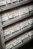 Racks of test tubes on shelves in medical laboratory