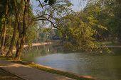 Urban Garden With A Lake In Hanoi
