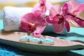 Beautiful spa setting with flower on bright background