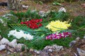 Mayan Ritual Offerings