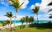 Beautiful tropical beach at Harbour island Bahamas
