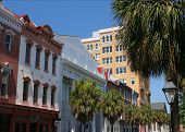 picture of quaint  - The quaint streets of Charleston South Carolina lined with palmetto palms - JPG