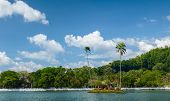 Small island with palm trees in the middle of pond in the city of Kandy, Sri Lanka