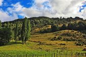 Countryside in Chilean Patagonia. Low hills overgrown with grass, forest and blocked by  low fence