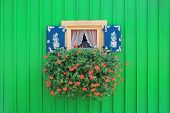 Window Of Boathouse With Painted Shutters And Flower Box