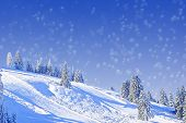 Wintry Slope With Fir Trees, Christmas Card Design