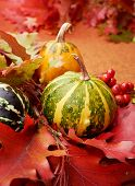 Autumnal background with pumpkins and leaves