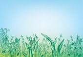 Summer grass border banner - hand drawn