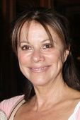 LOS ANGELES - AUG 1:  Nancy Lee Grahn at the William deVry Fan Club Event at the California Canteen on August 1, 2014 in Los Angeles, CA