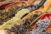 assortment of dry tea in scoops close up on wooden background