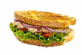 picture of lent  - Grilled Tuna Panini Sandwich on white background - JPG