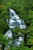 stock photo of triplets  - Vibrant Triplet Falls in Otway National Park - JPG