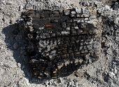 Burnt Firewood