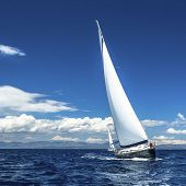 picture of yachts  - Yacht sails with beautiful cloudless sky - JPG