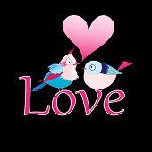 Bird Lovers