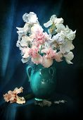 picture of gladiolus  - Still - JPG