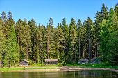 Old Wooden Huts In Forest