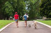stock photo of driveway  - Girls having fun skateboarding home driveway with dogs - JPG