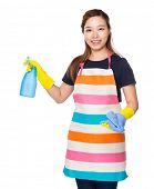 Housewife hold with rag and water spray