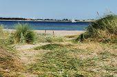 Dune Beach Fehmarn Sea And Sailing Ship