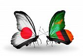 Two Butterflies With Flags On Wings As Symbol Of Relations Japan And Zambia